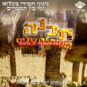 תבנה חומות ירושלים