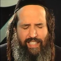 יוסף קרדונר