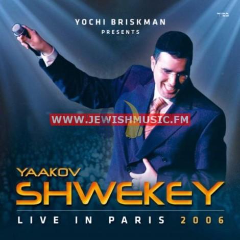הופעה בפריז 2006