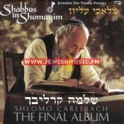 Shabbos In Shomayim