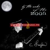 בעקבות הירח