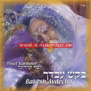 Bakesh Avdecha