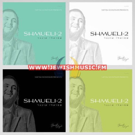 Shmueli-2