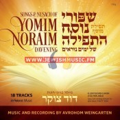 Songs & Nusach Of Yomim Noraim Davening