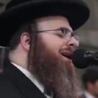 Sheya Hanstater