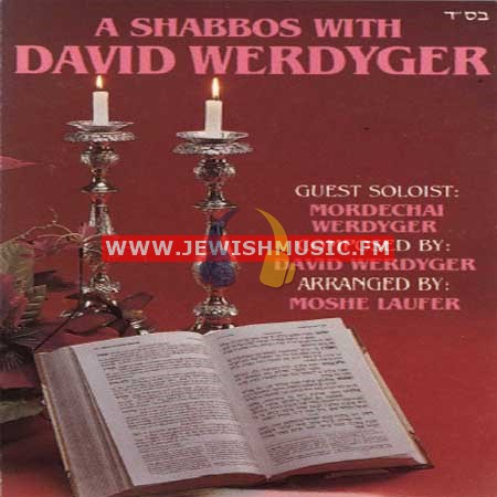 A Shabbos With David
