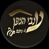 תזמורת ענבי הגפן