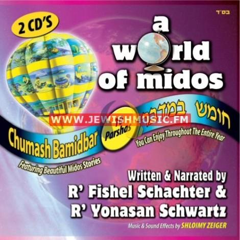 A World Of Midos – Bamidbar