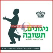 Nigunim Fin Tshuva – Vocal
