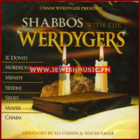 Shabbos With The Werdygers 1