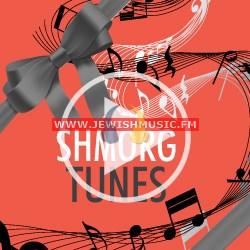 2013 – The Shmorg 5