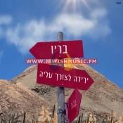 Yeridah Letzorech Aliyah
