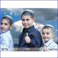 The 3 Aharon Brothers
