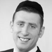 Dovid Stein