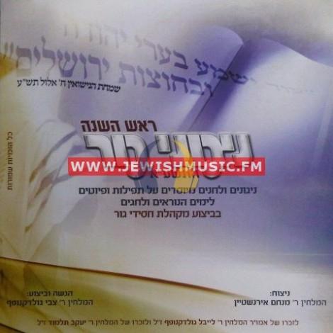 Rosh Hashanah 5771