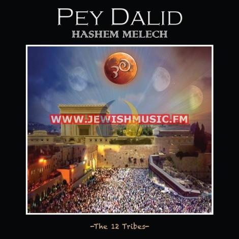 Hashem Melech