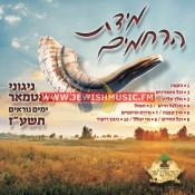 Yomim Nora'im 5777 – Midas Hurachmim
