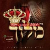 Yomim Nora'im 5776 – Meloich