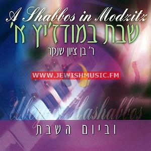 A Shabbos In Modzitz 1 – Uveyom Hashabbos