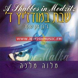A Shabbos In Modzitz 4 – Melaveh Malka