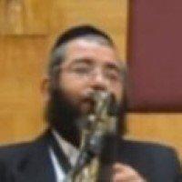 Shlomo Mintzberg