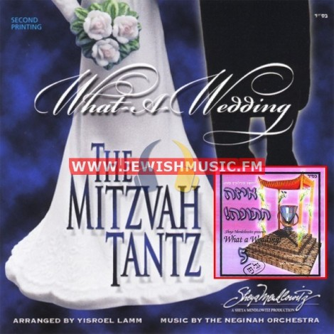 What A Wedding 5 – The Mitzva Tantz