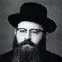 Kalman Stekel