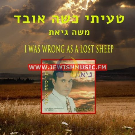 I Was Wrong As A Lost Sheep