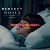 Perfect World (Spanish Version)