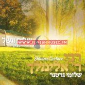 Reb Elimilech