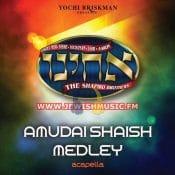Amudai Shaish Medley (Acapella)