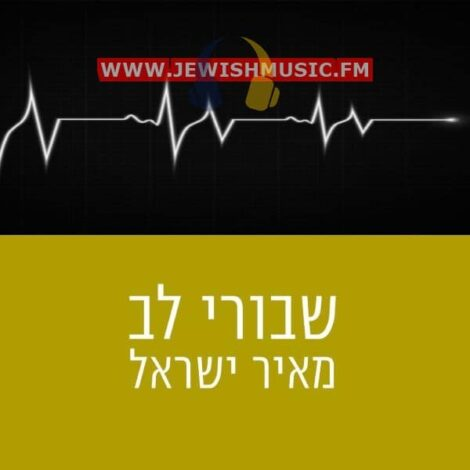 Shvurei Lev (Single)