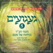 Nigunei Chabad – Gaaguim 5